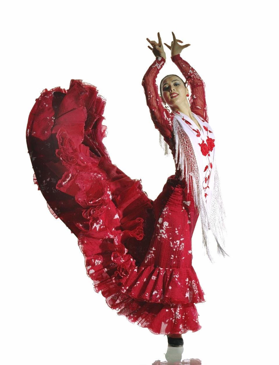 谷淑江スペイン舞踊DANZARTE